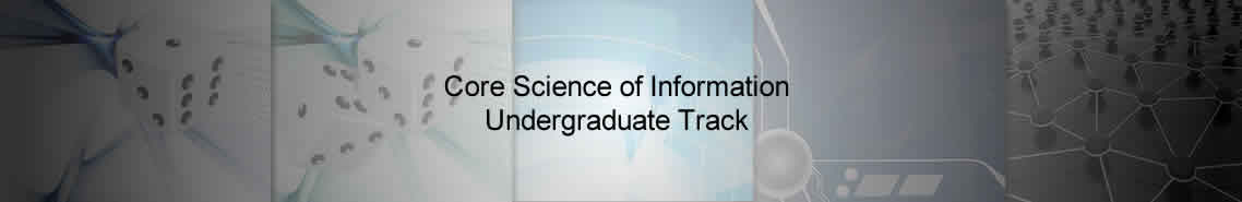 Core Science of Information Undergraduate Track